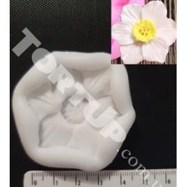 Молд Нарцисс 2D 4,5см
