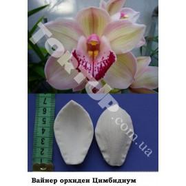 Вайнер Орхидея цимбидиум